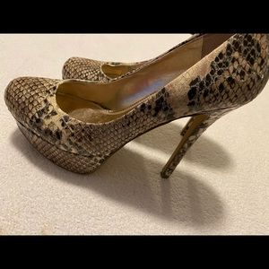 Almost Brand New Gorgeous Heels By STEVE MADDEN